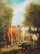 Коровы и овцы - Труайон, Констан