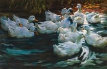 Утки в пруду - Кёстер, Александер