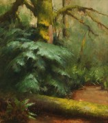 Лес во время дождя - Ридель, Давид