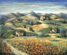Тоскана, виллы и маки