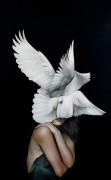 Крылья голубей - Копии Эми Джадд