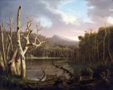 Пейзаж с мертвыми деревьями - Коул, Томас