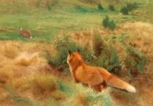 Лиса, охотящаяся на зайца - Лильефорс, Бруно