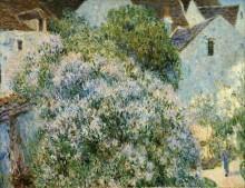 Сирень в моем саду - Сислей, Альфред