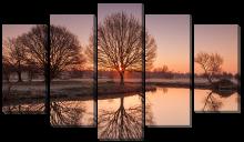 Дерево с отражением