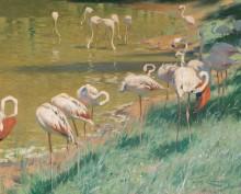 Фламинго - Кунерт, Вильгельм