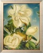 Цветы магнолии - Кук, Пол Родда