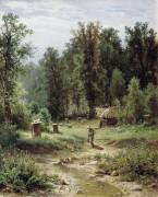 Пасека в лесу, 1876 - Шишкин, Иван Иванович