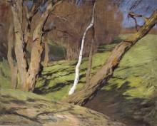 Весна. 1898 - Левитан, Исаак Ильич