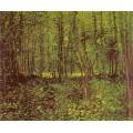Деревья и подлесок - Гог, Винсент ван