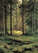 Хвойный лес. Солнечный день, 1895 - Шишкин, Иван Иванович