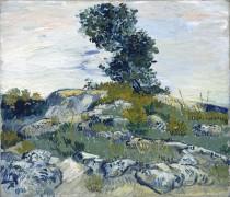 Камни и дуб (Rocks with Oak Tree), 1888 - Гог, Винсент ван