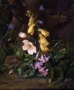 Полевые цветы у подножия дерева - Петер, Франц Ксавье