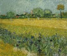 Поле с цветами близ Арля - Гог, Винсент ван