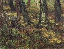 Подлесок и плющ (Tree Trunks with Ivy), 1889 - Гог, Винсент ван