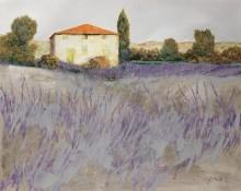 Лаванда - Борелли, Гвидо (20 век)