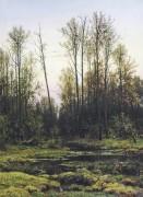 Лес весной, 1884 - Шишкин, Иван Иванович