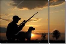 Охотник с собакой на закате - Сток