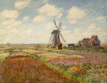 Поле тюльпанов в Голландии, 1886 - Моне, Клод