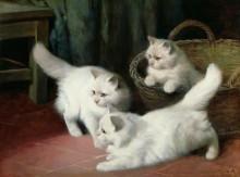 Три белых ангорских котенка - Хайер, Артур