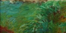 Водяные растения - Моне, Клод