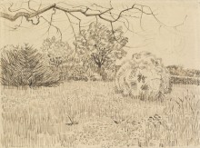 Парк с  кустарником (Park with Shrub), 1888 - Гог, Винсент ван