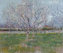 Цветущий фруктовый сад (Orchard in Blossom), 1888 - Гог, Винсент ван