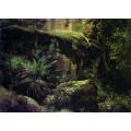Камни в лесу. Валаам, 1858-1860 - Шишкин, Иван Иванович