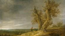 Пейзаж с двумя дубами - Гойен, Ян ван