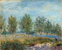 Тополя на берегу реки - Сислей, Альфред