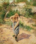 Копающая крестьянка - Писсарро, Камиль