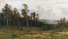 Богатый лог (Пихтовый лес на реке Каме), 1877 - Шишкин, Иван Иванович
