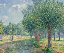 Пейзаж, 1906 - Пикабиа, Франсис