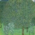 Розовые кусты под деревьями - Климт, Густав