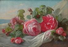 Розы - Грёнланд, Тойде
