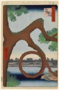 ch 234 - Хиросиге, Андро