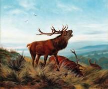 Ревущий олень - Дайкер, Карл Фридрих