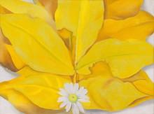 Желтые листья гикори с ромашкой - О'Кифф, Джорджия
