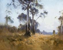 Коримбии, Кангару Флэт (Долина кенгуру), 1921 - Бойд, Теодор Пенли