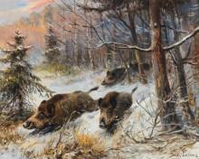 Дикие кабаны в зимнем пейзаже - Лоренц, Вильгельм