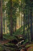 Ручей в лесу (На косогоре), 1880 - Шишкин, Иван Иванович