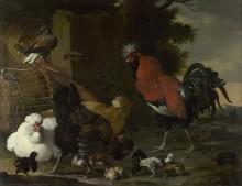 Петух, куры и цыплята - Хондекутер, Мельхиор