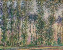 Тополя в Живерни, 1887 - Моне, Клод