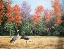 Канадские журавли во Флориде - Данлап, Мэрилин (20 век)