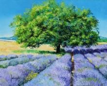 Дерево в лавандовом поле