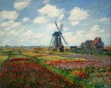 Тюльпановые поля в Голландии - Моне, Клод