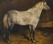 Пятнистая серая лошадь - Бонёр, Роза