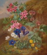 Альпийские цветы - Шустер, Аделе