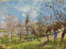 Весна. Цветущие деревья - Сислей, Альфред