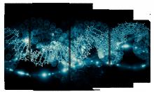 Молекулы в свечении